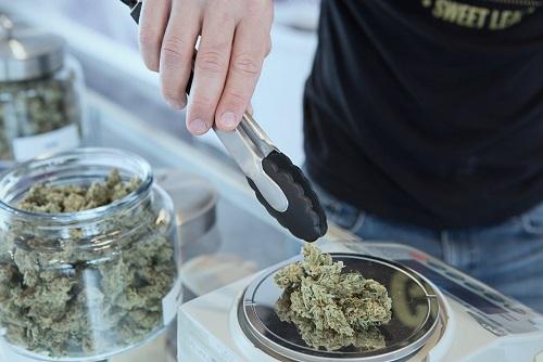 pierwsze apteki wprowadziły medyczną marihuanę
