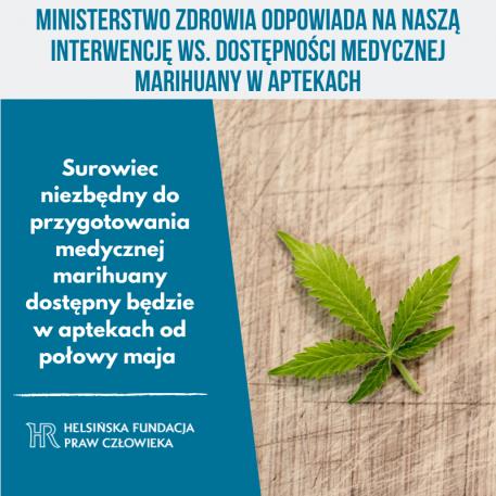 MZ: surowiec niezbędny do przygotowania medycznej marihuany dostępny będzie w aptekach od połowy maja