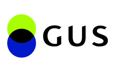 Raport GUS: Apteki i punkty apteczne w 2020 roku